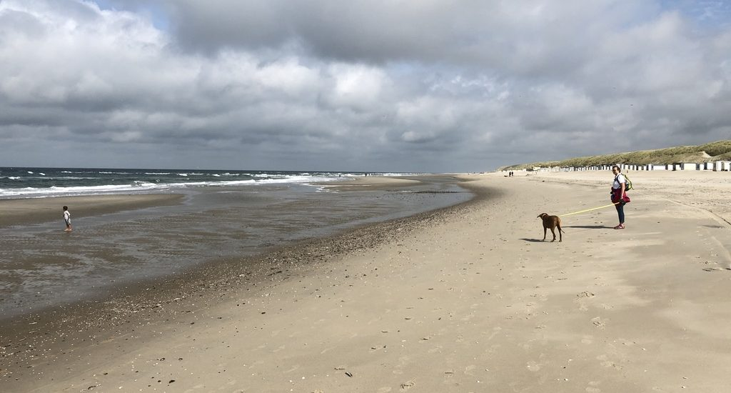Dayos Gedanken - der Himmel über Texel