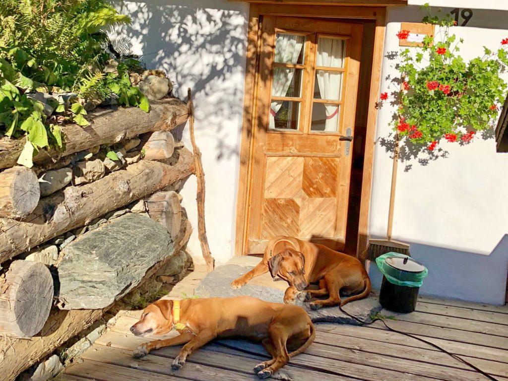 Kleines Sonnenbad vor der Tür