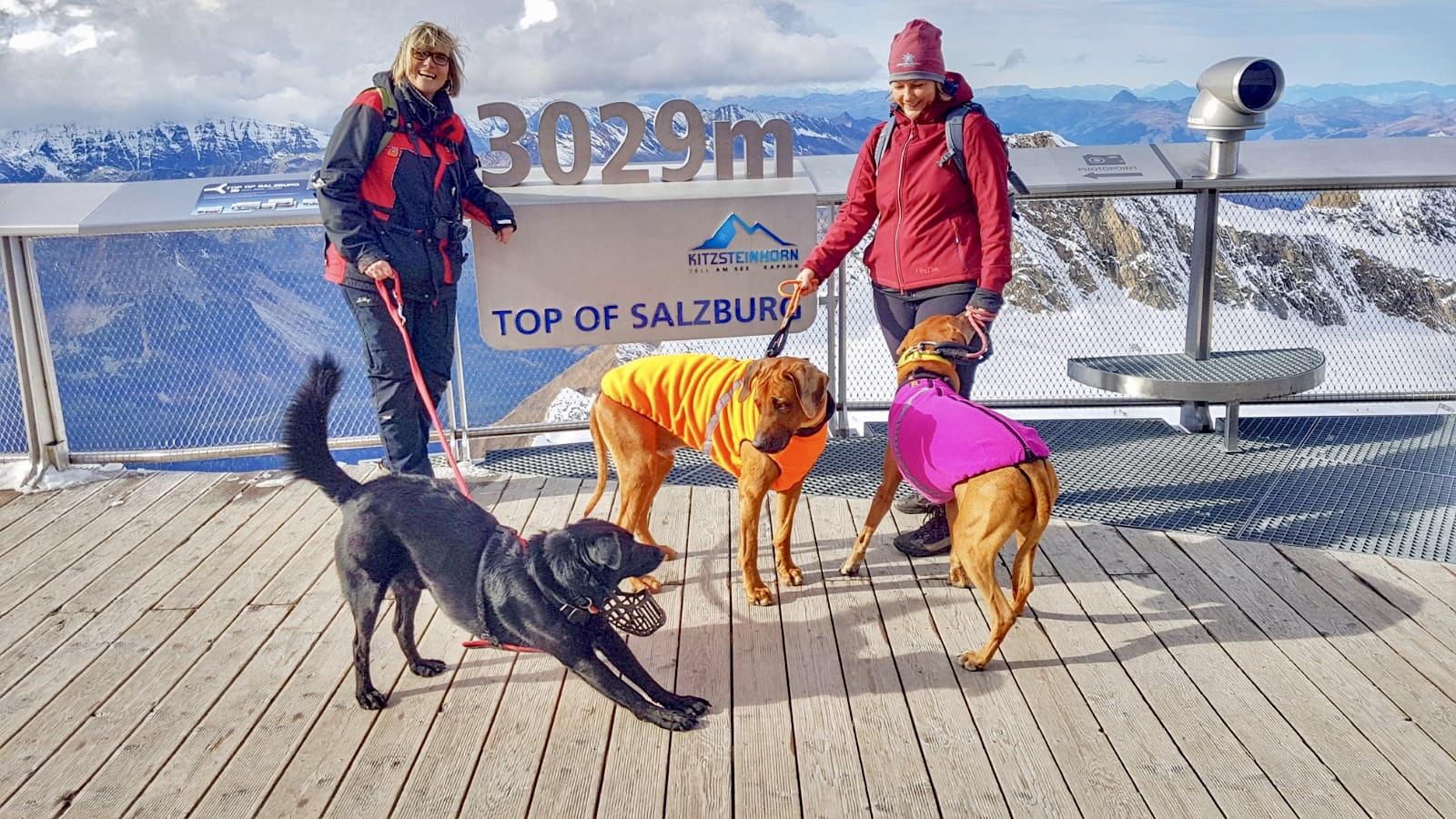 Auf dem Kitzsteinhorn empfand ich das Tragen eines Hundemantels nicht so schlimm