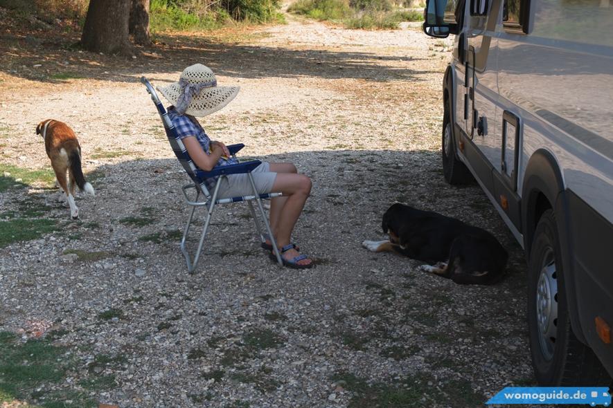 Mit Hund und Wohnmobil verreisen