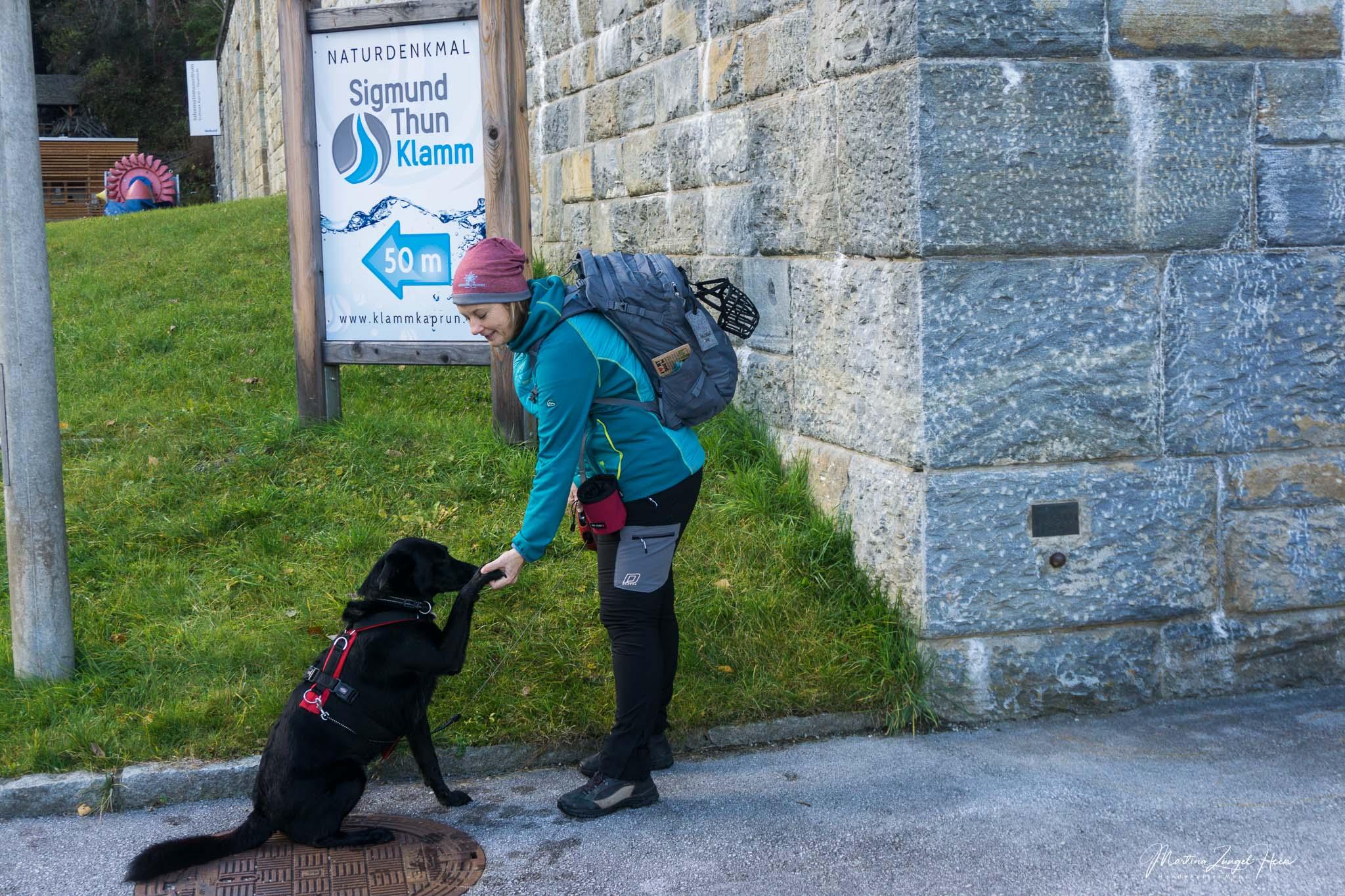 Zwei Wandertipps mit Hund rund um Kaprun