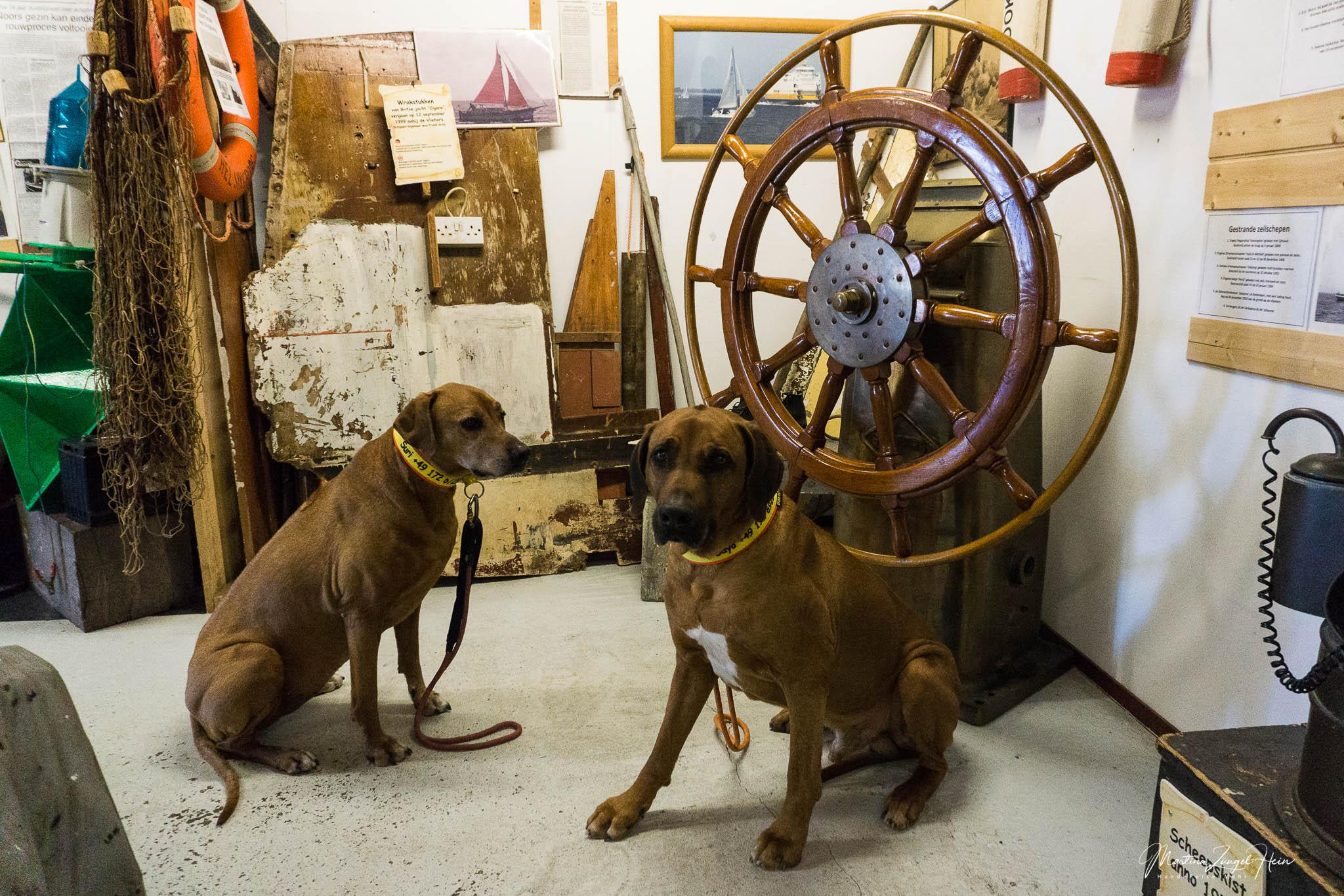Zwei hundefreundliche Museen auf Texel