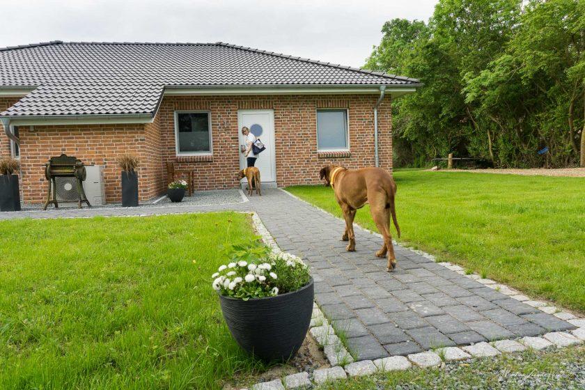 Urlaub auf Fehmarn in einem Ferienhaus