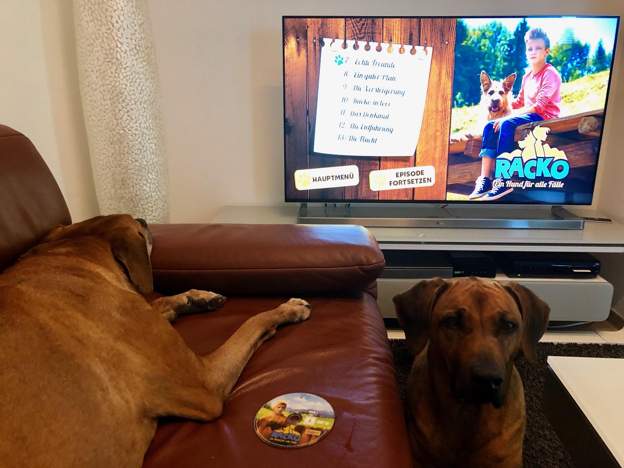 Für euch gesehen: Racko - ein Hund für alle Fälle