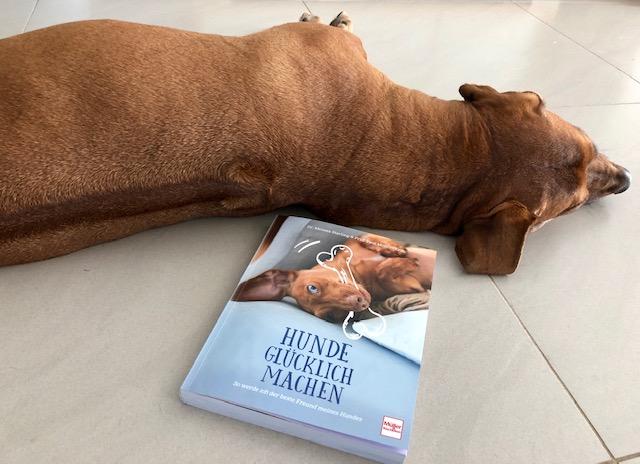 Für euch gelesen - Hunde glücklich machen