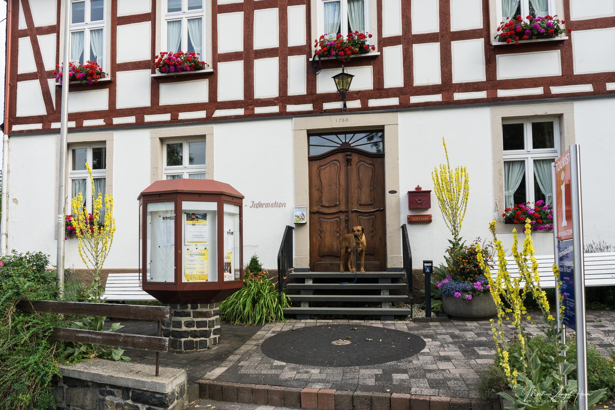 Etappe 8 des WesterwaldSteigs startet an der Touristinfo in Bad Marienberg
