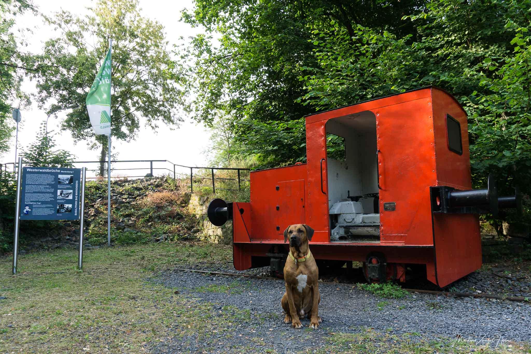 Der Basaltpark in Bad Marienpark entführt die Geschichte des Basaltabbaus im Westerwald