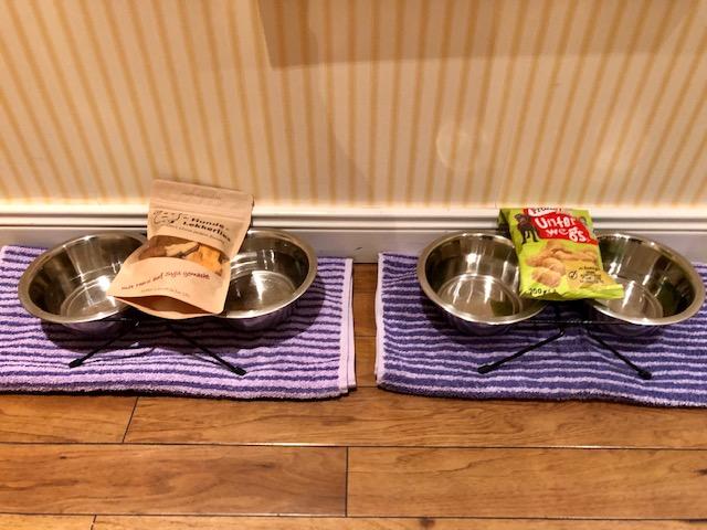 Im Strandhotel Sylt in Westerland werden die Vierbeiner mit Näpfen und Leckerlis begrüßt