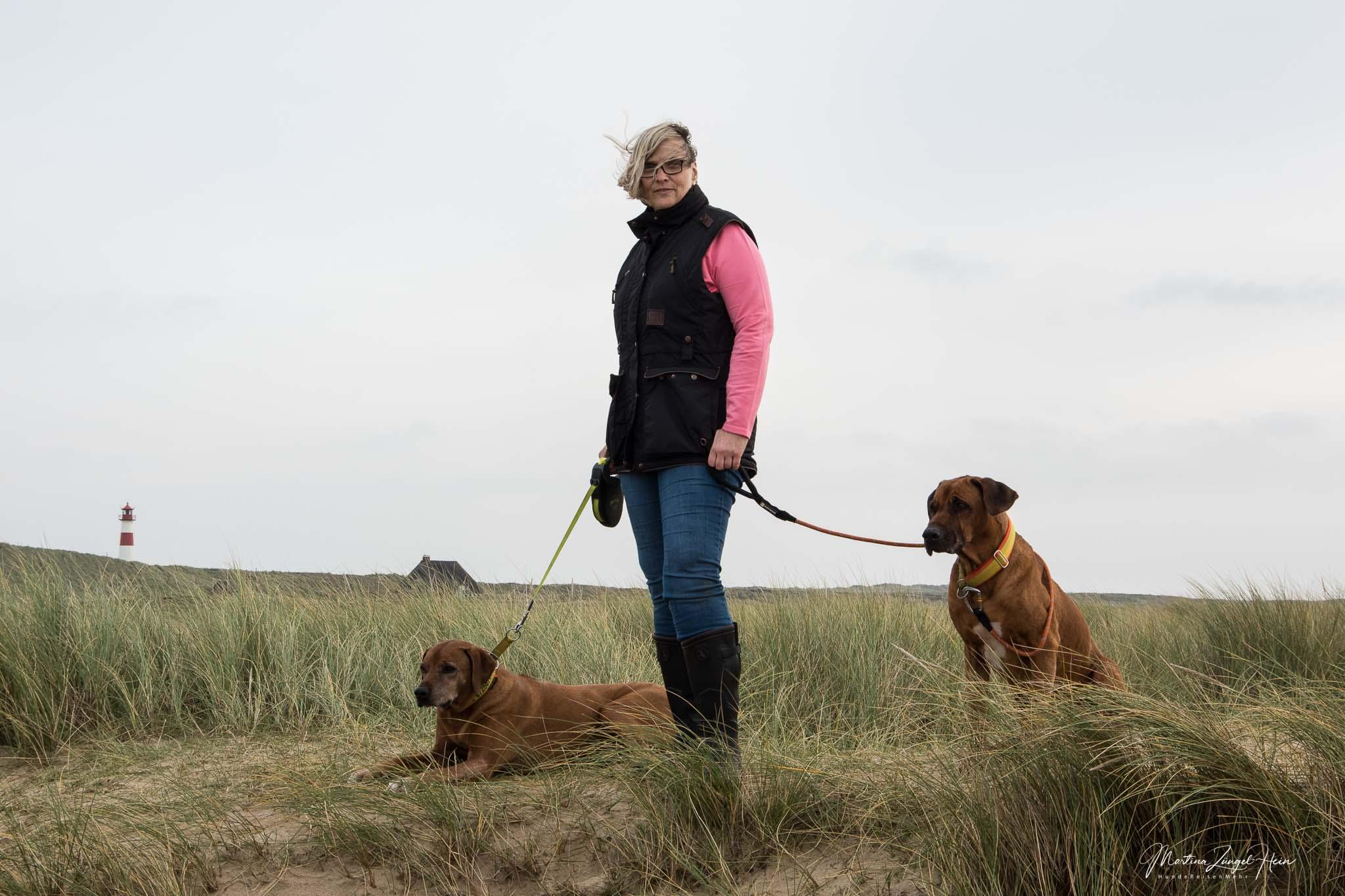 Mit der DogCoach Hundeweste und Gummistiefeln macht eine Wattwanderung im Herbst Spaß