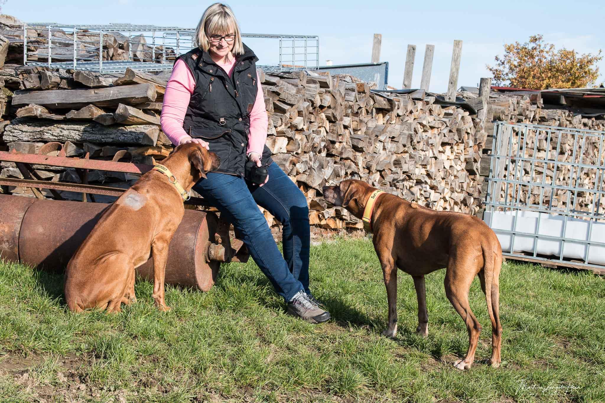 Persönlich getestet - DogCoach Hundeweste