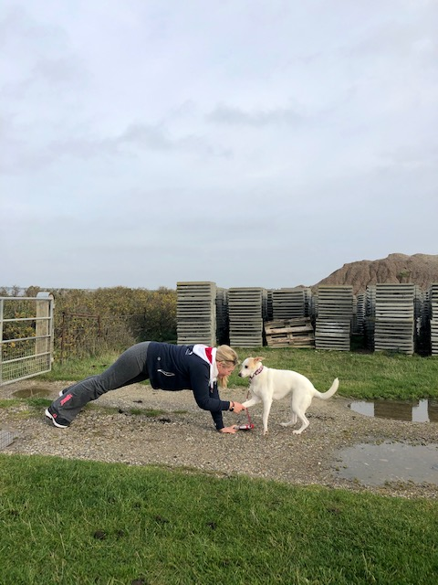 Bibi und Happy zeigen Fitness-Übungen für Hund und Mensch