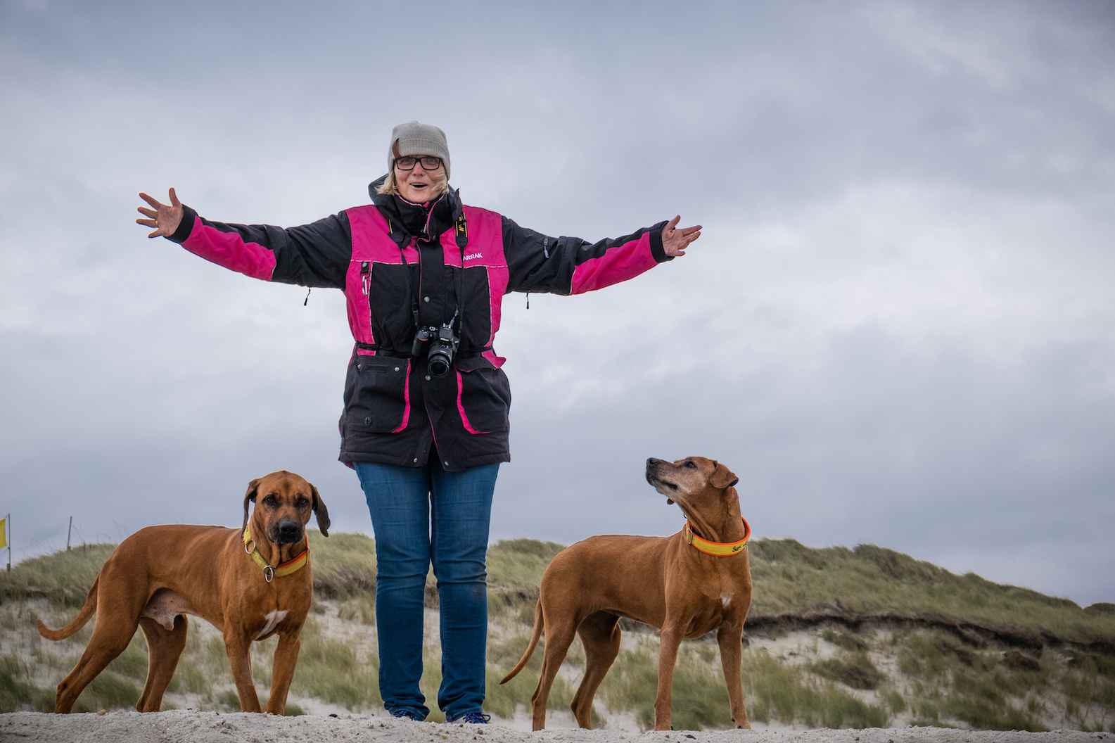 Sylt4Dogs-Foto-by-Beate-Zoellner