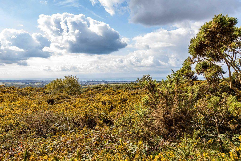 Ein Blick über die normannische Landschaft