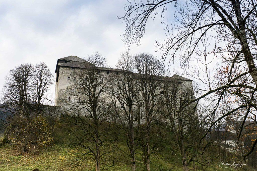 Die Burg hinter Bäumen verstärkt