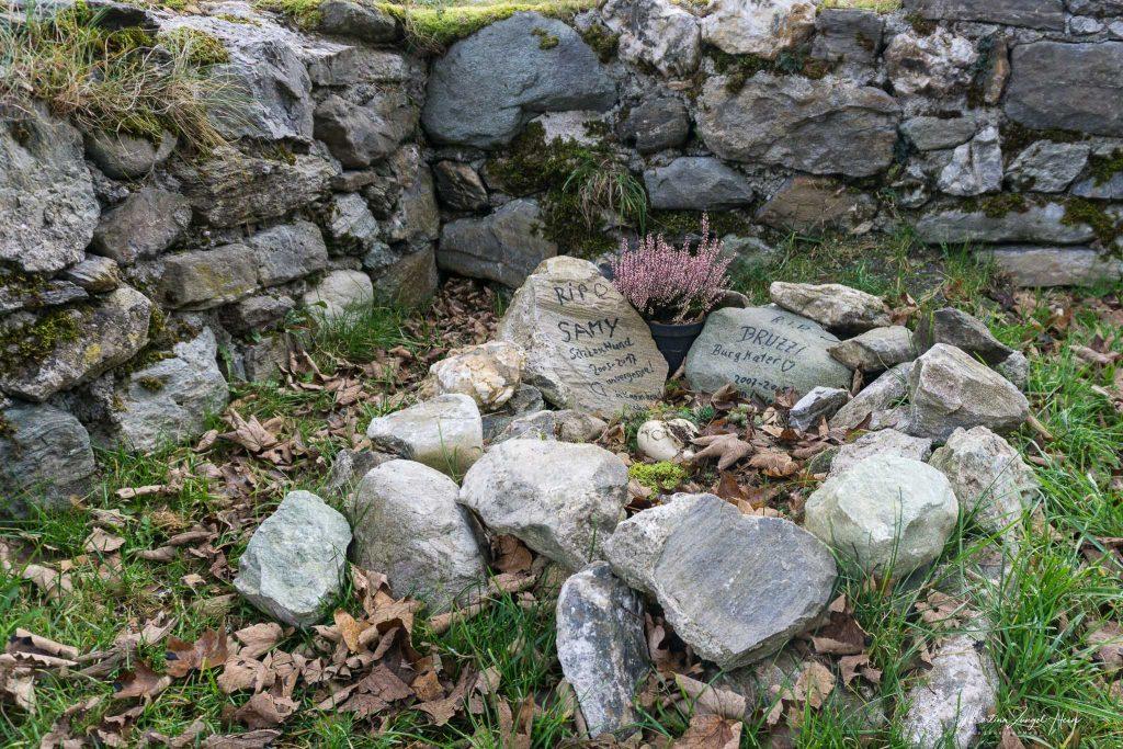 Gräber der Schlosskatzen und -hunde