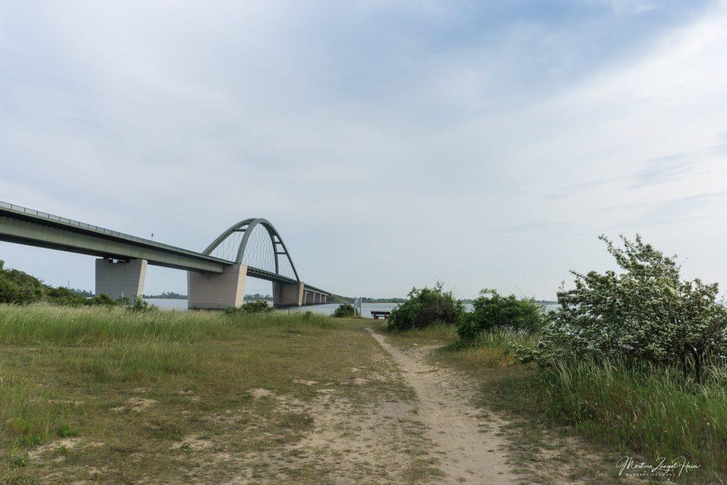 Fußmarsch zum Strand an der Fehmarnsundbrücke