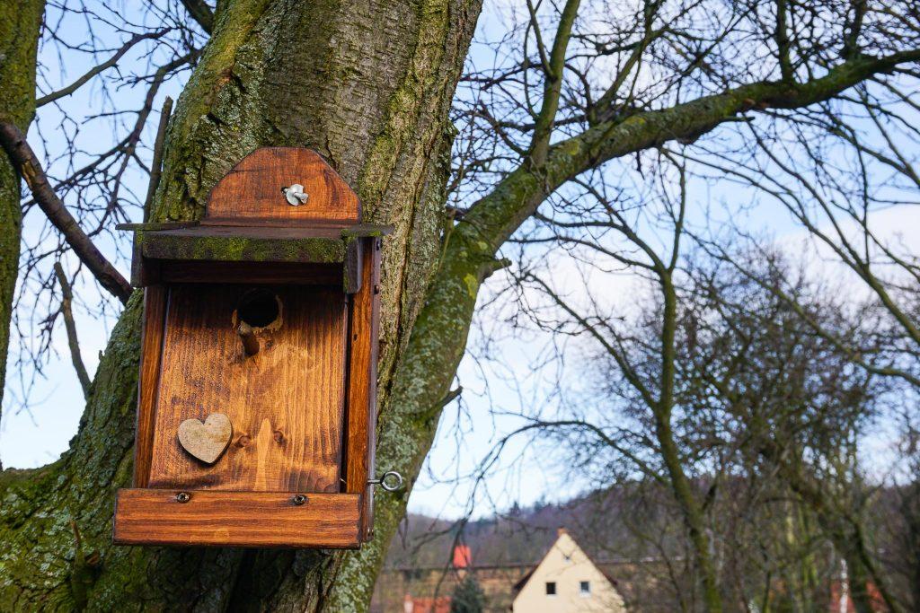 Auch für Vögel wird auf dem Klostergut gesorgt