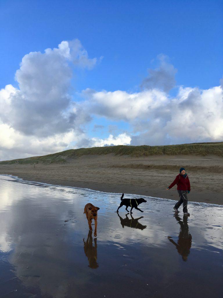 Wolken, Wasser, Hunde ... und Angelika