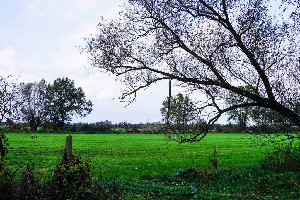 Felder und Wiesen, wohin das Auge blickt