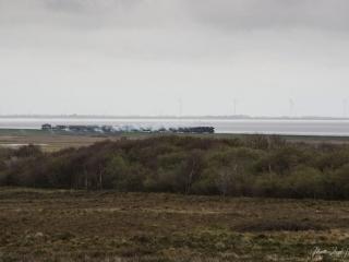 Eine historische Dampfeisenbahn auf dem Weg zum Festland