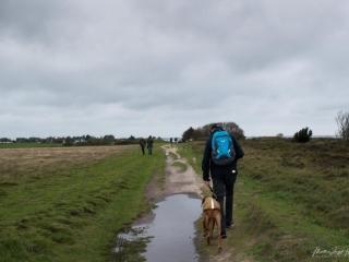 Thomas und Dayo spazieren durch die Dünenlandschaft