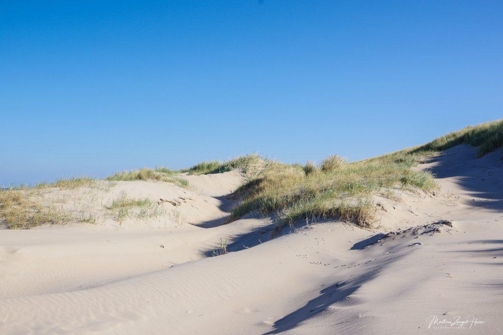 Die Dünen gehören zum Naturpark Texeler Dünen