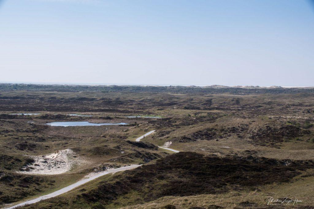 ... auf den Naturschutzpark Dünen von Texel ...