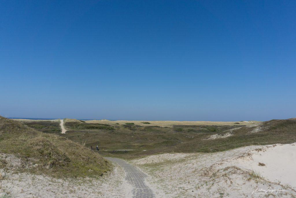 Viele Wegen führen durch das Dünengebiet