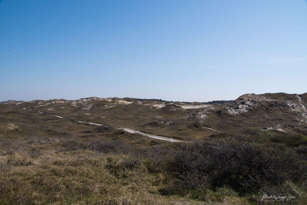 Blick über den Nationalpark Dünen in der Nähe von Ecomare