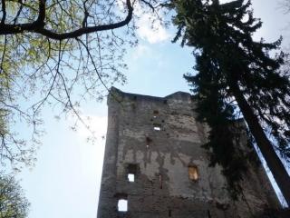 Vom römischen Limes zur mittelalterlichen Sporkenburg