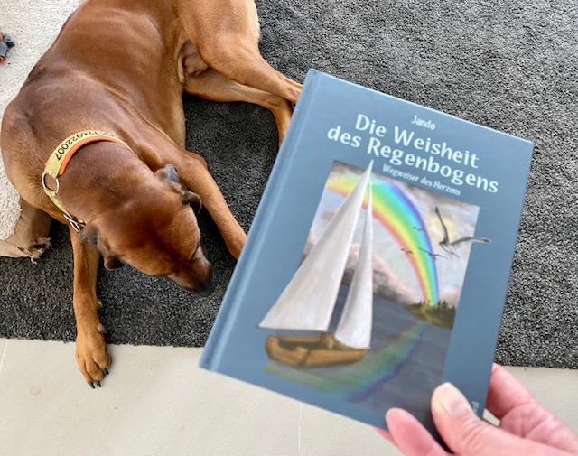Rezension - Die Weisheit des Regenbogens
