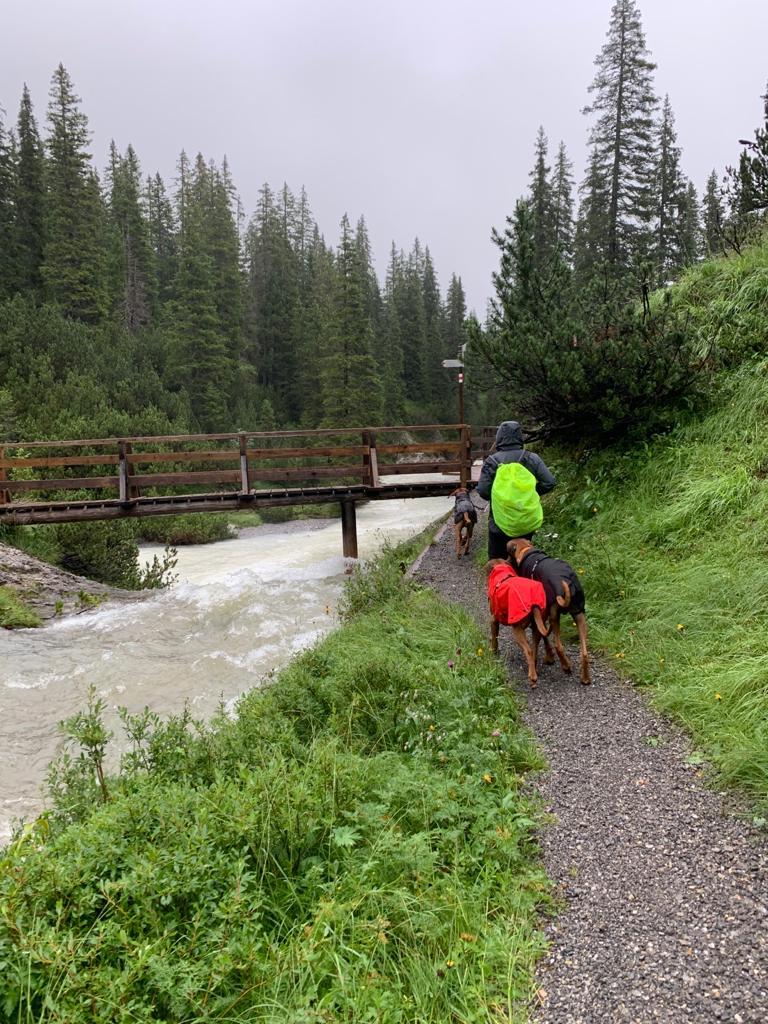 Auf der ersten Etappe regnete es in Strömen, und es war eiskalt