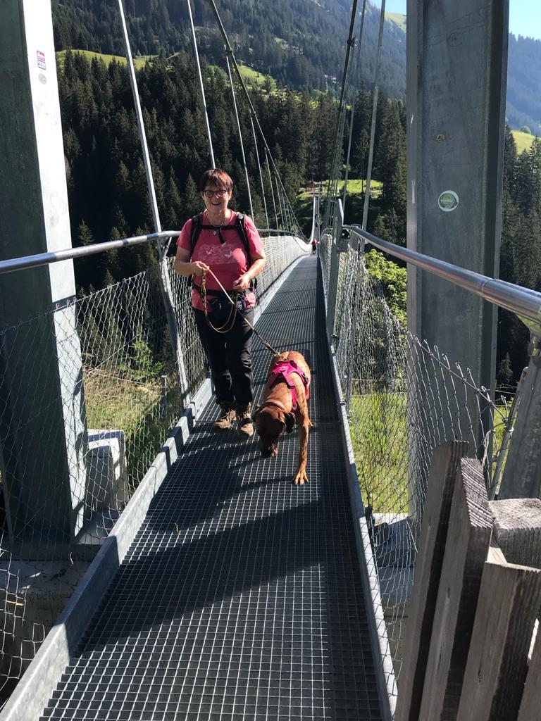 Problemlose Überquerung der Hängebrücke über die Höhnebachtalschlucht mit Hunden