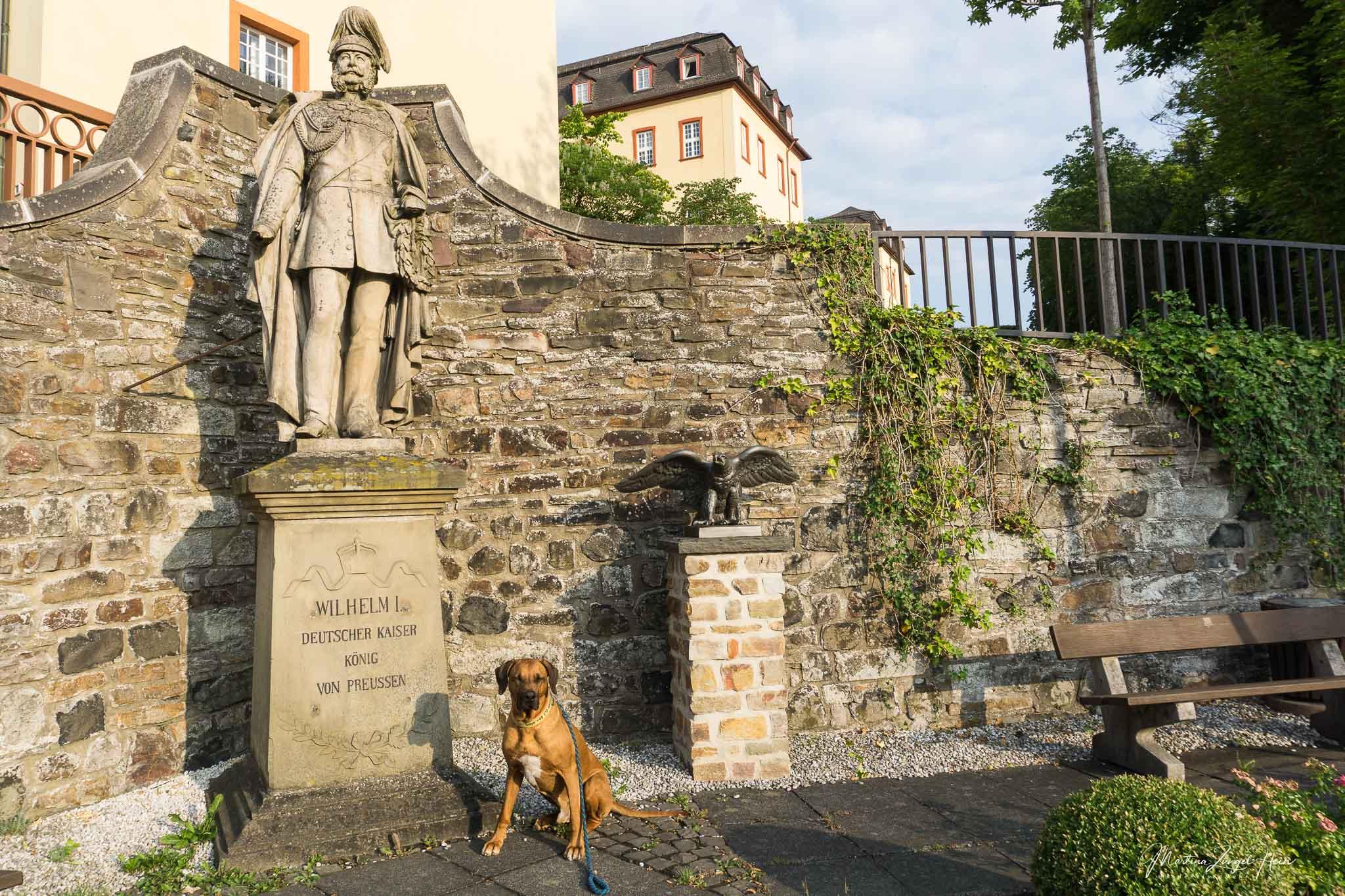 Dayo posiert am Kaiser-Denkmal in Hachenburg