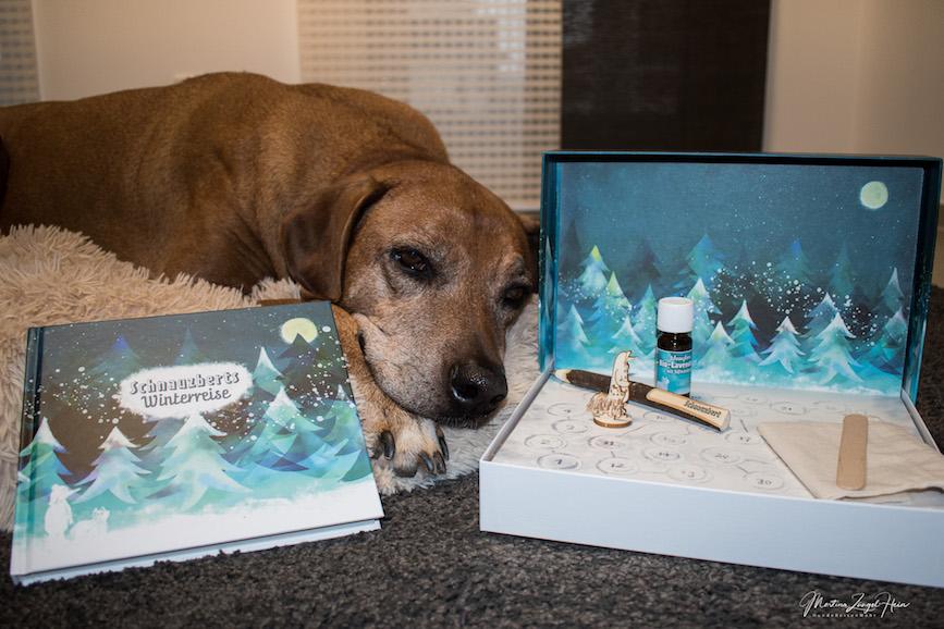 Schnauzberts Winterreise - ein Adventskalender für Hund und Mensch