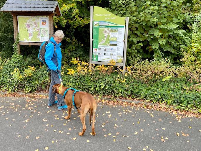 Wäller Tour Elberthöhen - auf dem Wanderparkplatz in Niederelbert gibt es eine Toureninformation