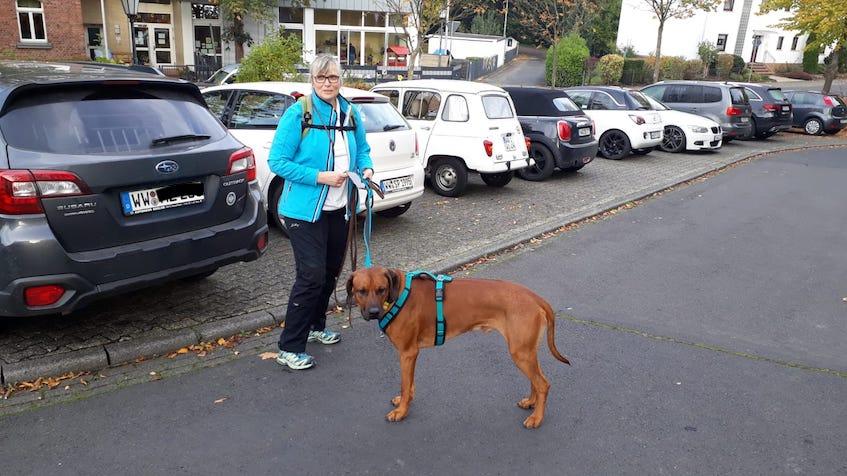 Wäller Tour Elberthöhen mit Hund