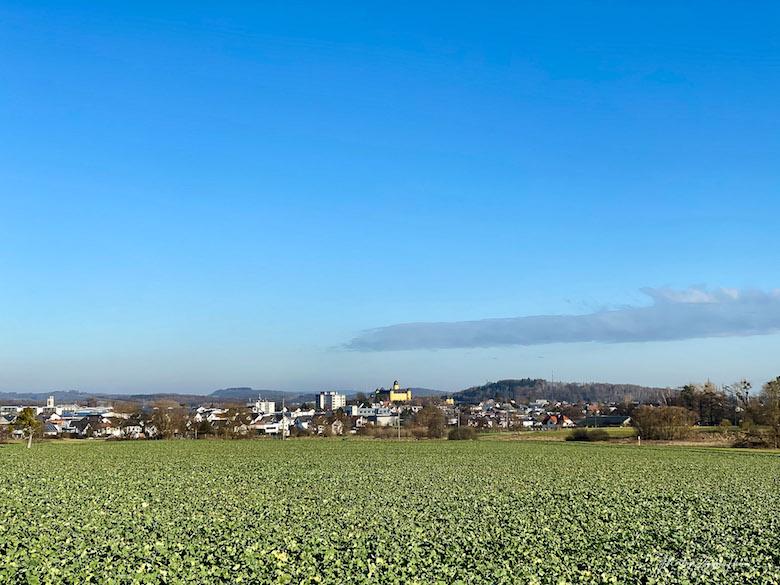 Herrlicher Blick auf Montabaur mit seinem Schloss