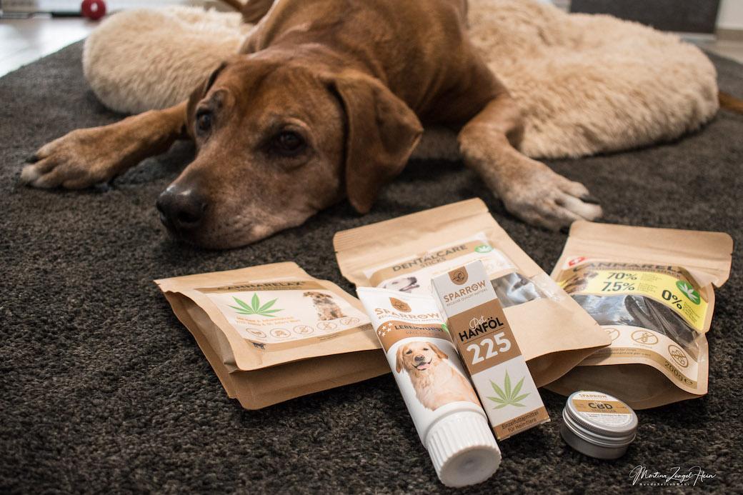 Unter den CBD Hanfprodukten für Hunde sind sicherlich die Leberwurst und die Hühnerleckerchen die Renner