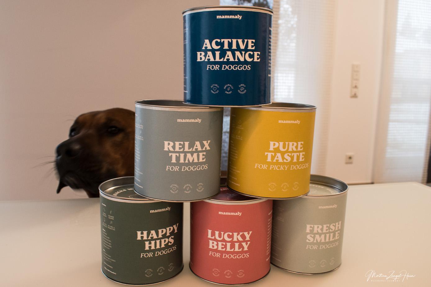 #makeitpawsible für alle Doggos und Hoomans