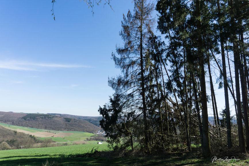 Vom Dielkopf aus habe ich einen tollen Blick über den südlichen Westerwald