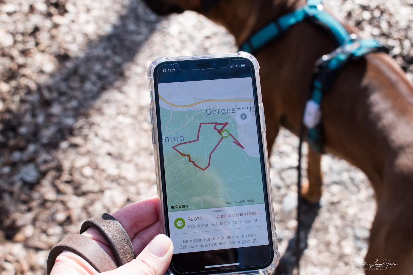 Auch im Westerwald habe ich einen guten Empfang für den Weenect GPS Tracker für Hunde