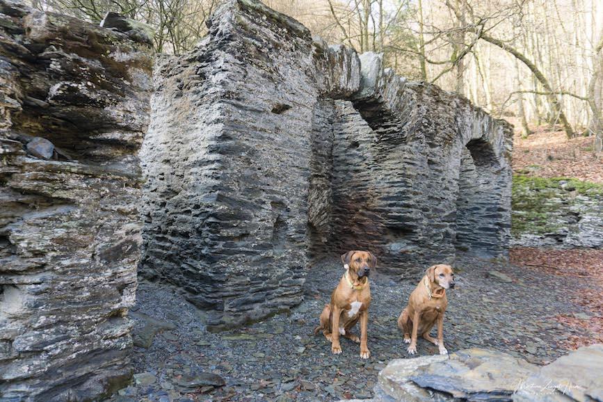 Dayo und Suri an der Ruine der Schmalzhütte