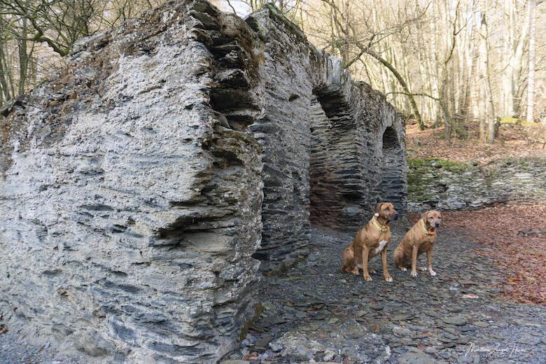 Dayo und Suri posieren professionell an der Ruine einer ehemaligen Schmelzhütte