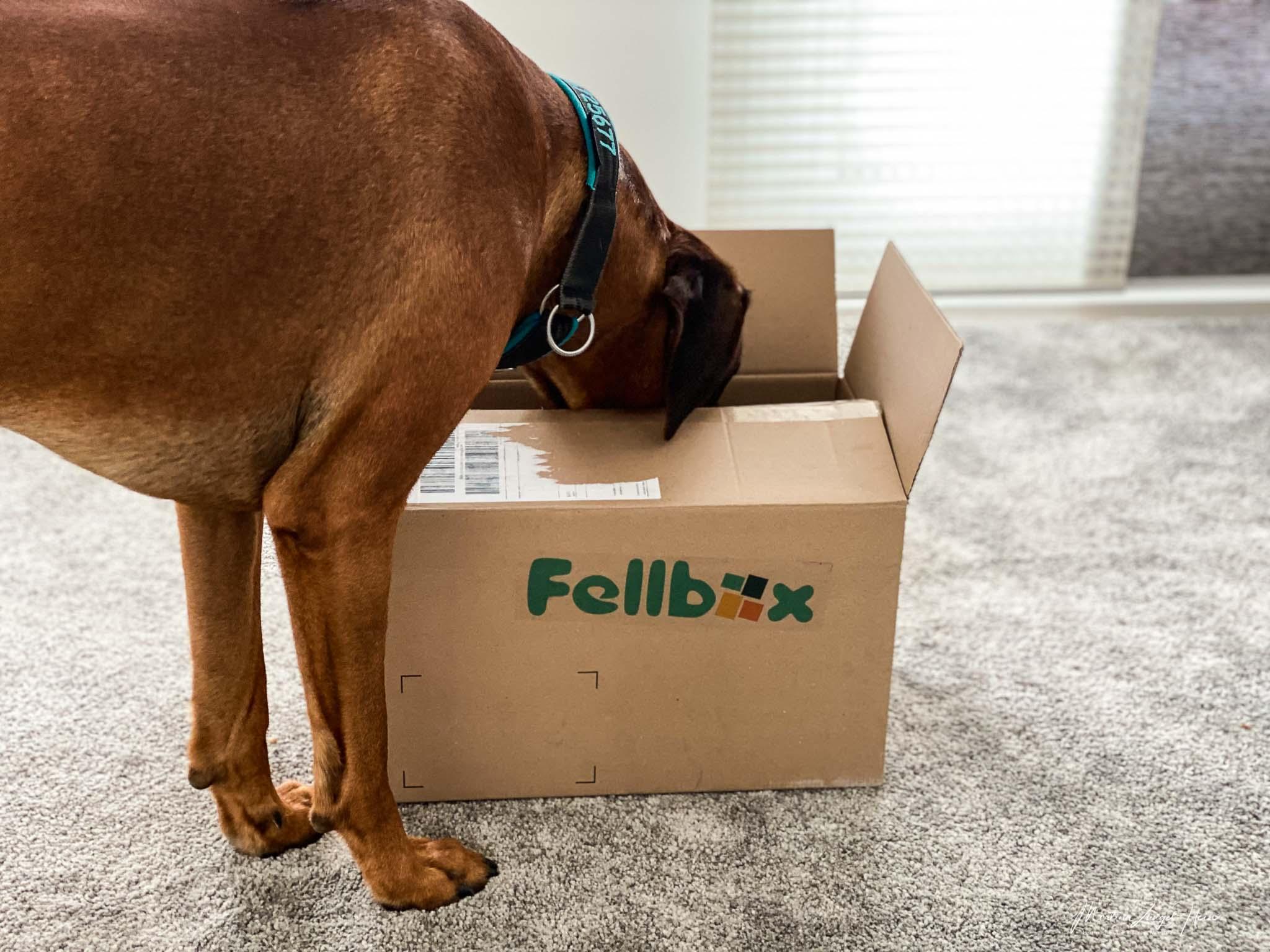 Welche Produkte enthält wohl meine Fellbox?